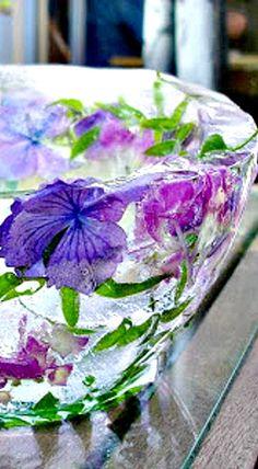 casa-da-cris-flores-geladas-roxas