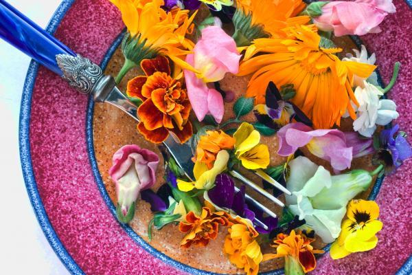 casa-da-cris-flores-prato