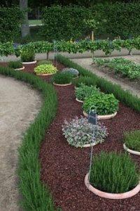 casa da cris horta em casa quintal