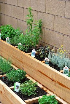 casa da cris horta em vasos casa quintal caixotes