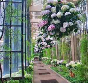 casa-da-cris-hortensias-entrada