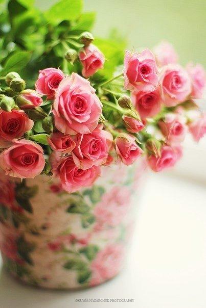 casa-da-cris-rosas-estampa