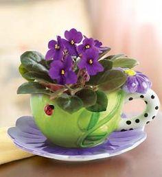 casa-da-cris-xicara-e-violeta
