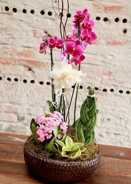 casa-da-cris-orquideas-bacia-de-fibra