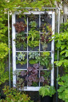 casa-da-cris-reciclagem-de-janelas-plantas