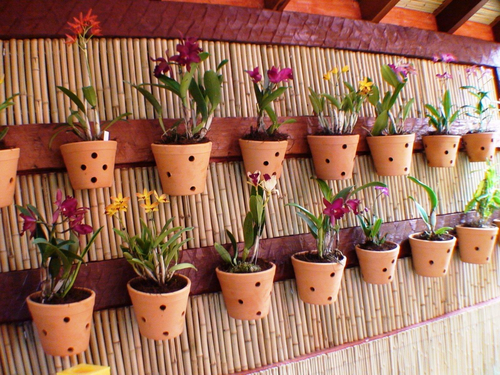 jardim-vertical-para-orquideas-1